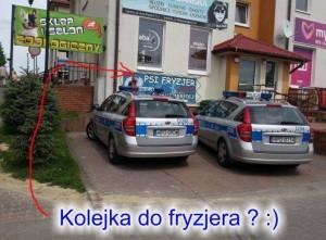 psi fryzjer policja